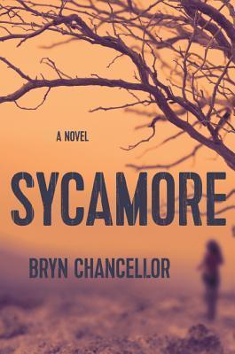 sycamorecover